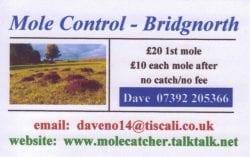 David Fletcher Mole Catcher